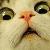 WTF Face Icon