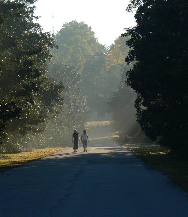 Just a Closer Walk by JoyKodani