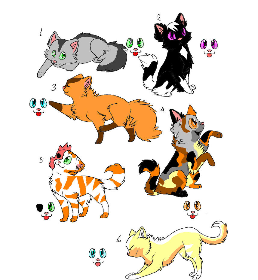Warrior Cat Names For She