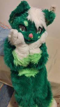 Fluffy ~