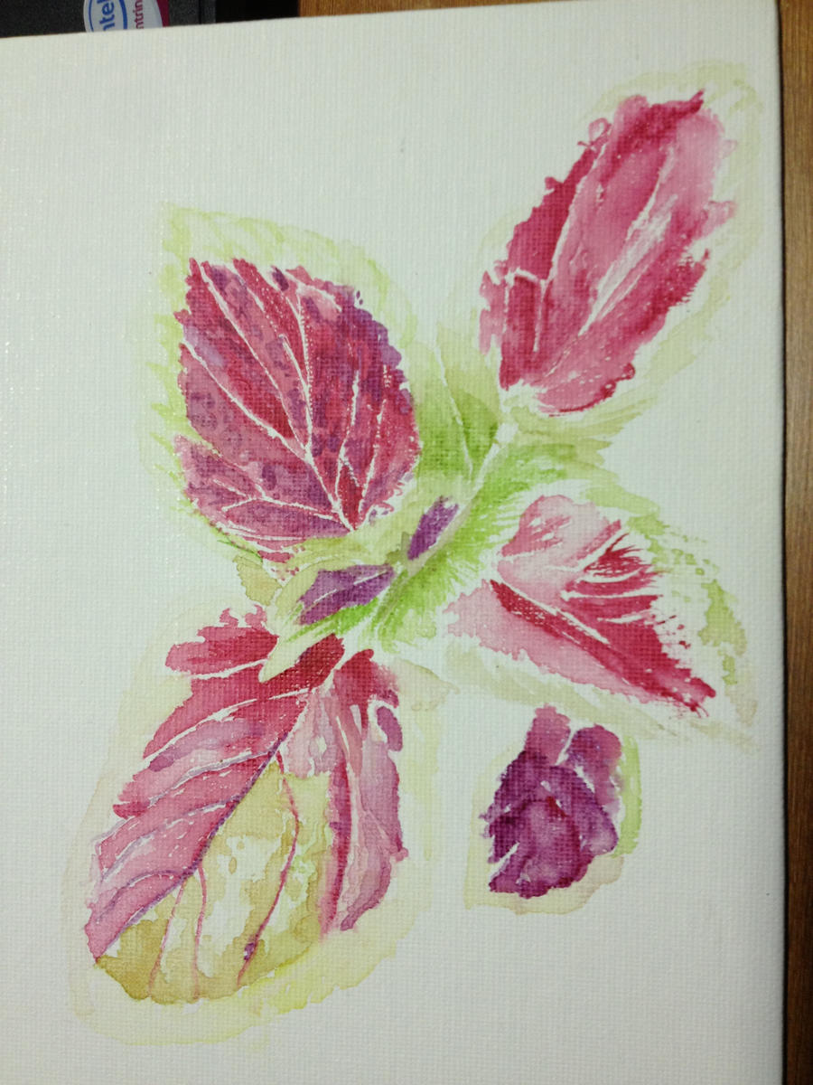 Some nice tulip watercolour :D by PatrickRyant