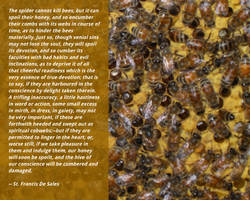 Wisdom from bees by uguardian