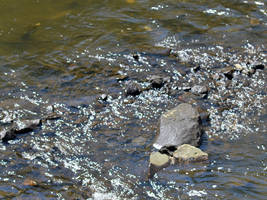 Little rocky rapids by uguardian