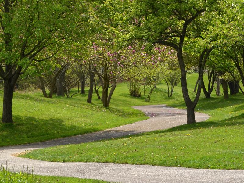 Springtime Path by uguardian