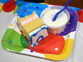 Birthday cake and Ice cream cup by uguardian