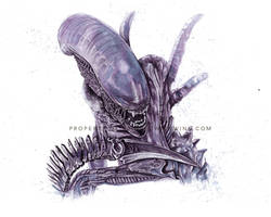 Painted with Wine: Xenomorph