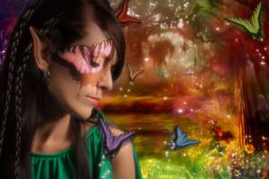 Dreams of Butterfly Glen by Pennes-from-Heaven