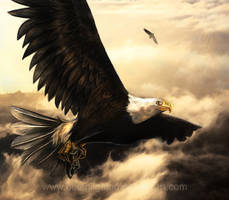 The Eagle's rescue by Belegilgalad