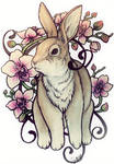 Bunny by gnarly-bones