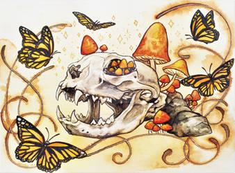 Cat Skull by gnarly-bones