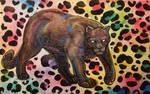 Funky Wildcat