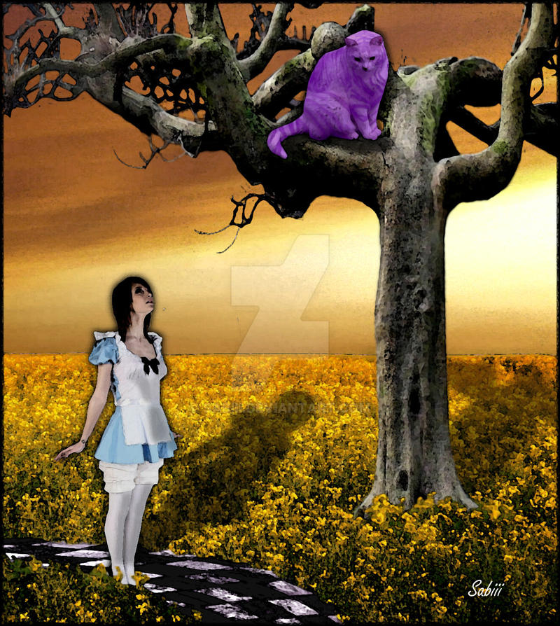 Alice and the cheshire cat by sabiii