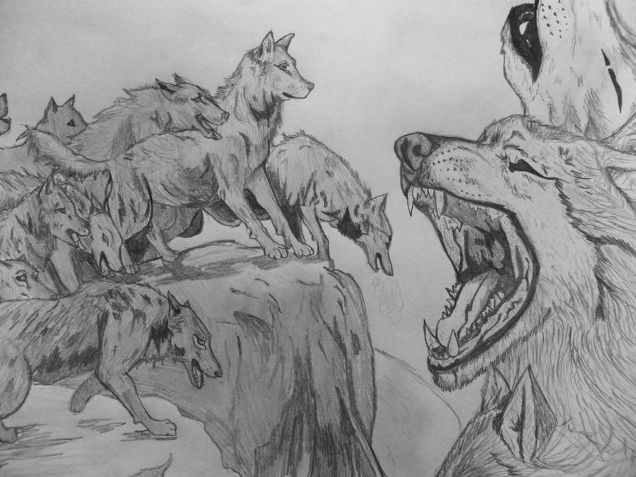 Pack Of Wolves By Milly612 On DeviantArt