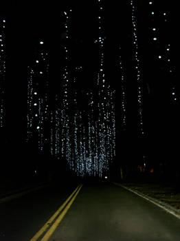 Faerie Lights on the Dark Road