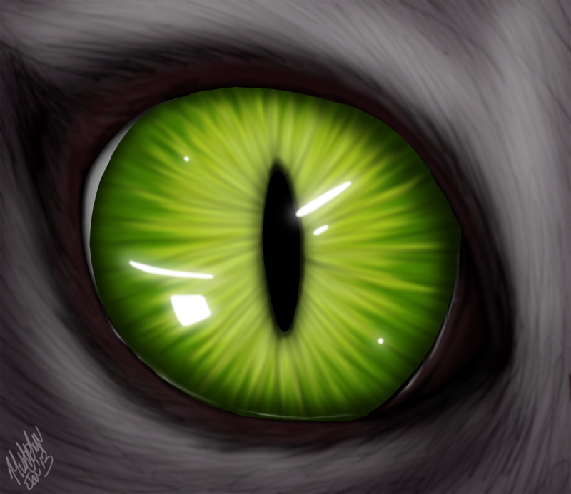 Cat's Eye by The-Zombie-Cat