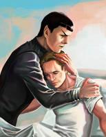 Star Trek XII:Don't do it anymore, Captain. by DarkMousyR