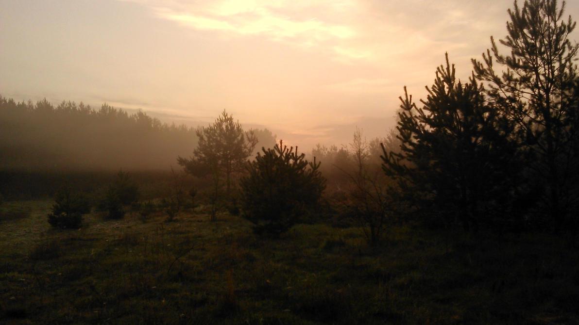 Autumn 2014 by Yanczarmxi