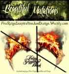Beautiful Mutations ~ Dark Angel Wings On Fire