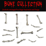 PNG Bone Collection