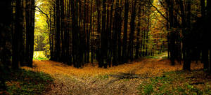 p156. Crossroads panorama