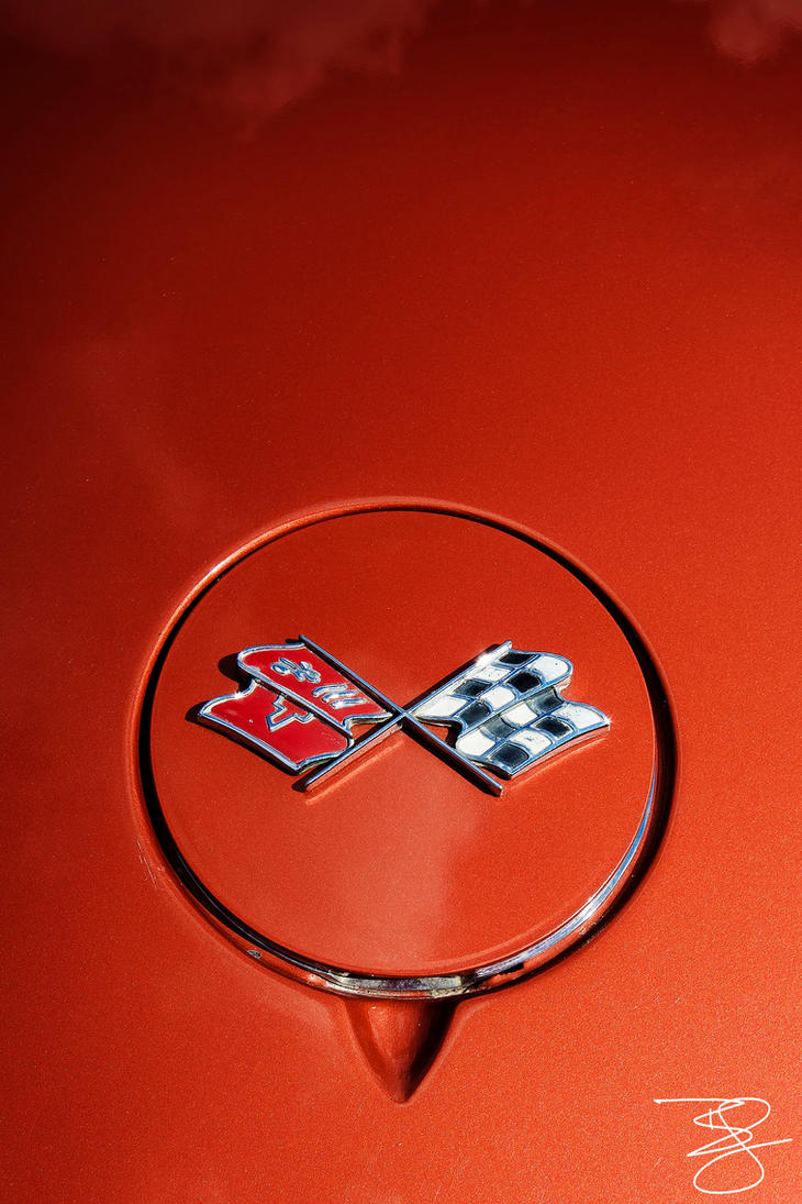 Corvette Emblem by braxtonds