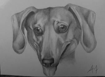 'Name of Dog Here' by somebodyaf