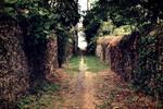 Passage #2