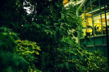 Urban Forest by Bijou44