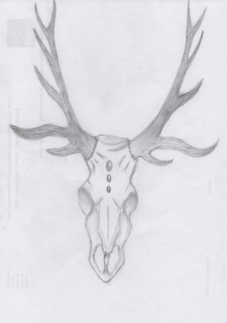 Elk skull drawing - photo#20