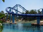 The Manta At Sea World Orlando!