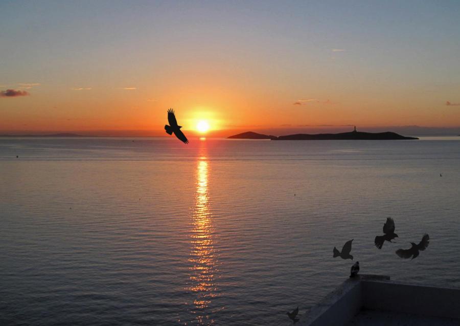 Sunset by Elenaclr4