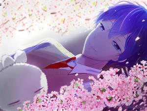 Ashiya Cherry blossoms
