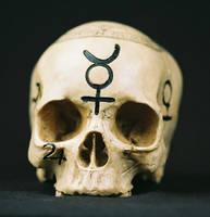 Skull Stock 2 by sadistik-stock