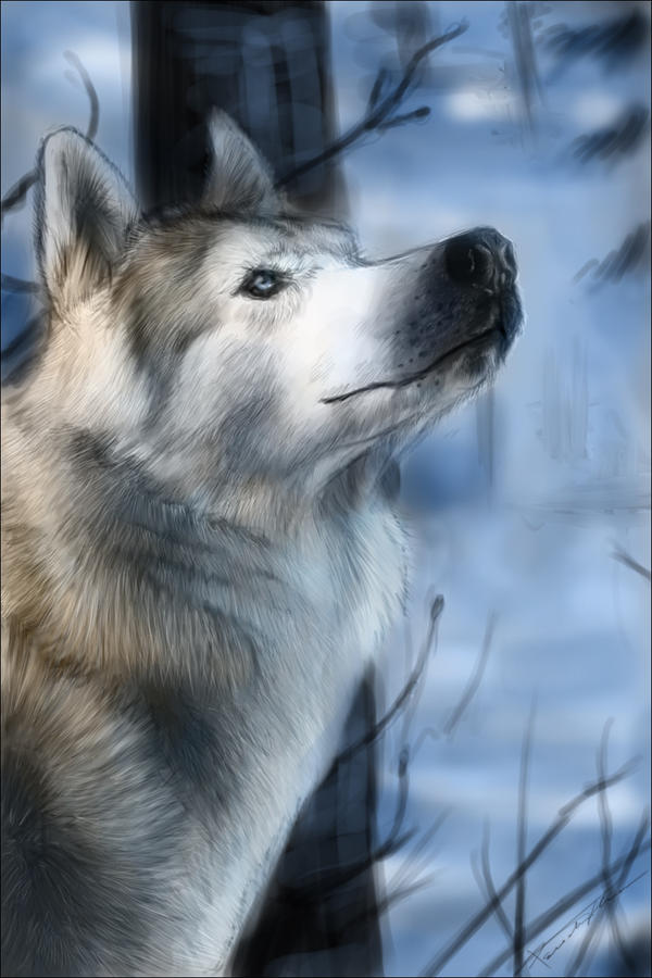 .::Winter::. by flame1111
