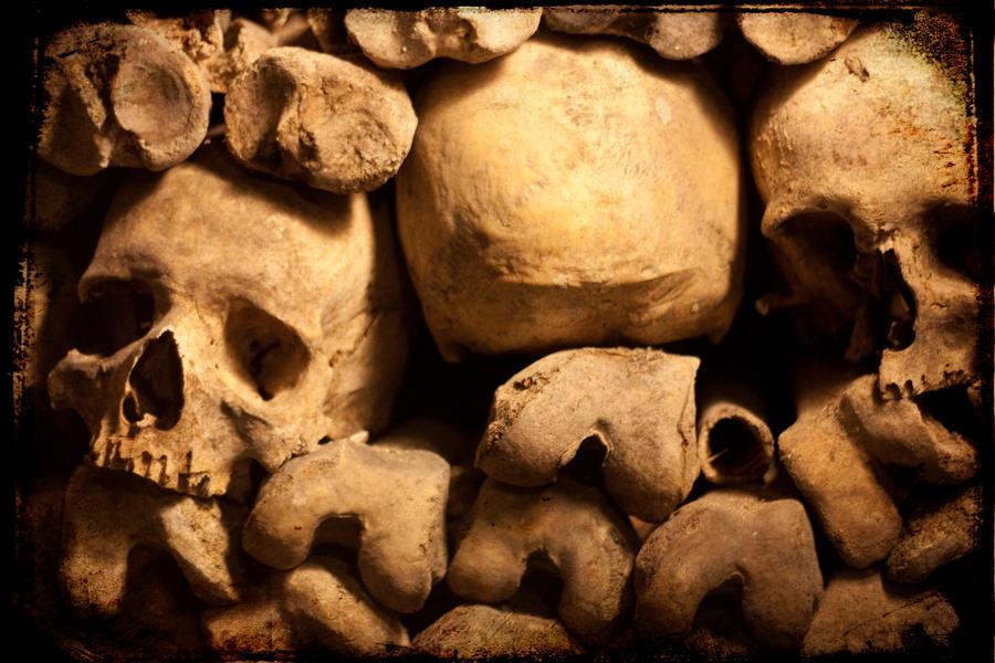 Bones by thren0dy