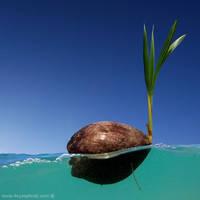 ......Floating