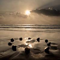 Ocean Sanctuary
