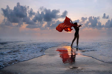 Ocean Fairytale