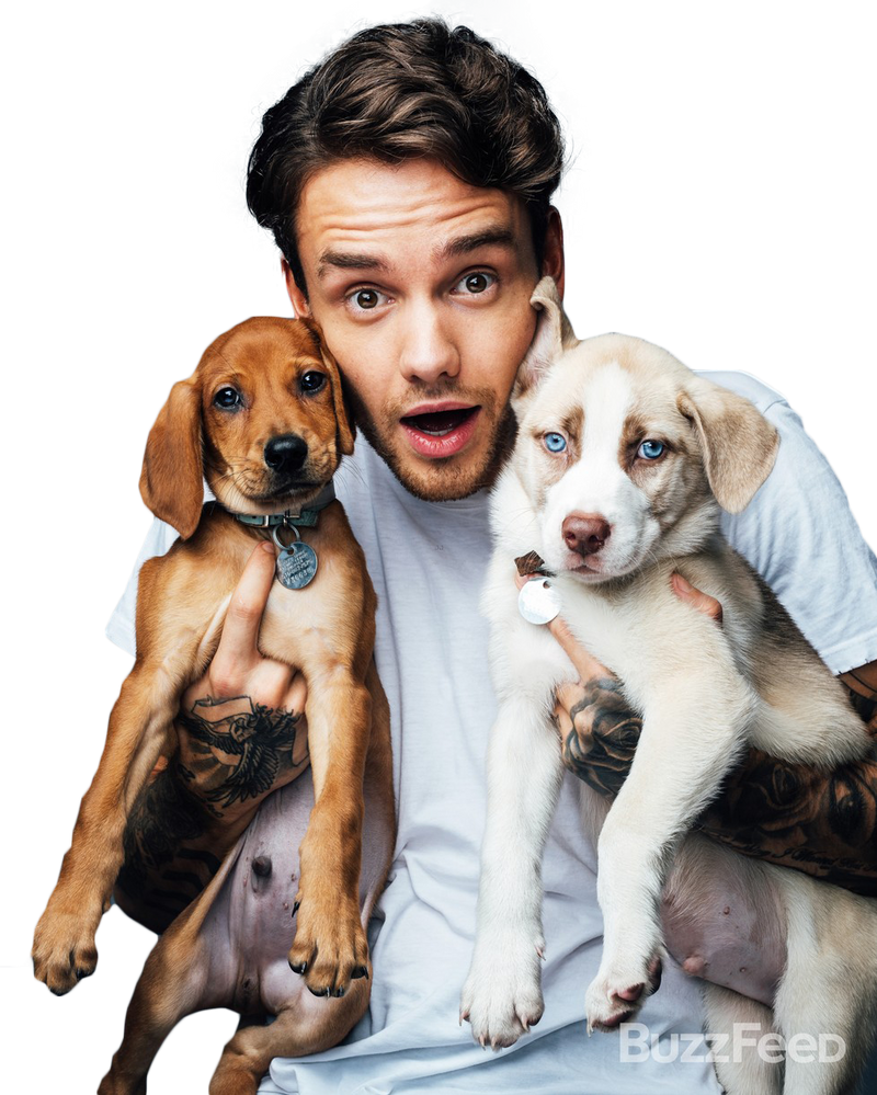PNG ft. Liam Payne by Andie-Mikaelson on DeviantArt