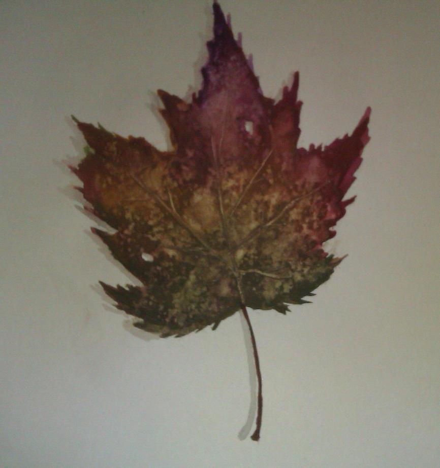 Leaf by Unga33