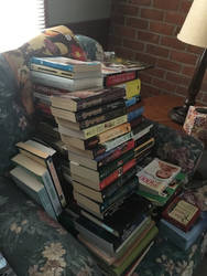 Novel Quest: My collection, my beginning.