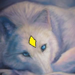 STARLIGHT85335's Profile Picture