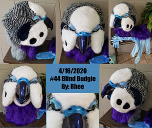 44 Budgie