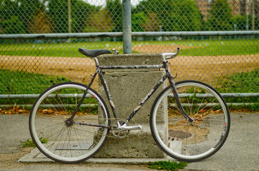 Gardin fixed gear