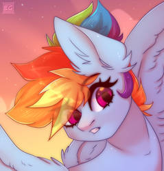 what is happening there? -MLP Rainbow Dash