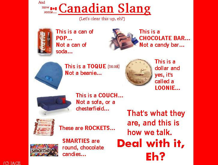the existence of slang language in canada Effects of language barriers on patient access and care  including specific  issues of definition and measurement that must be taken into account  and the  recognition that even the presence of another person in the.