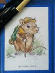Adventure Mouse