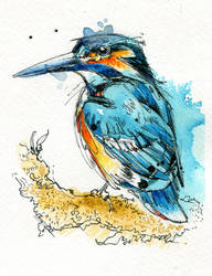 Kingfisher II by FinchFight
