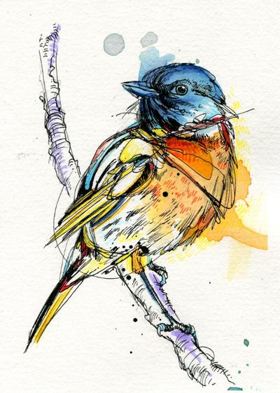 Kingfisher Paint Colour