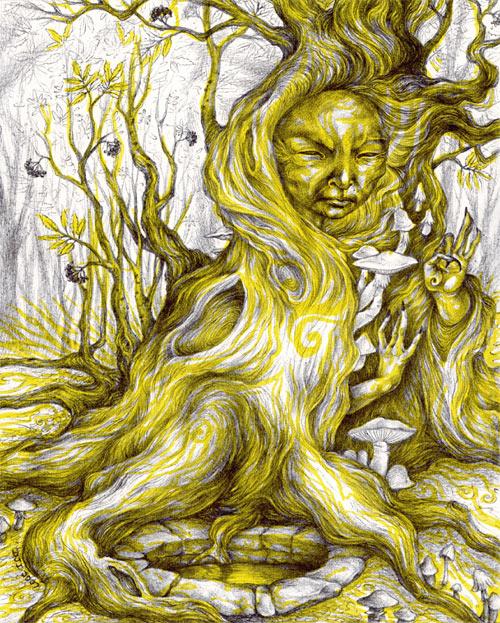 Sallow Mushroom Elder by sphinxmuse